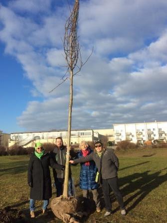Baumspende der Olchinger GRÜNEN im Grünanger in Olching